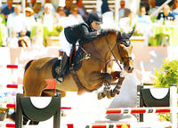 14-21-d774b-Jessica-Springsteen-USA-Vindicat-kwpn