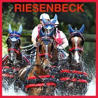 F-2014-08-02-Riesenbeck International