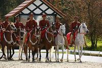 06-14-d0240-royal-cavalry.jpg