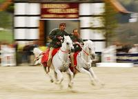 06-14-d2102-royal-cavalry.jpg