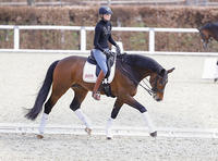 19-06-d138b-Deutsche-Bank-Reitsport-Akademie-Training-DOKR